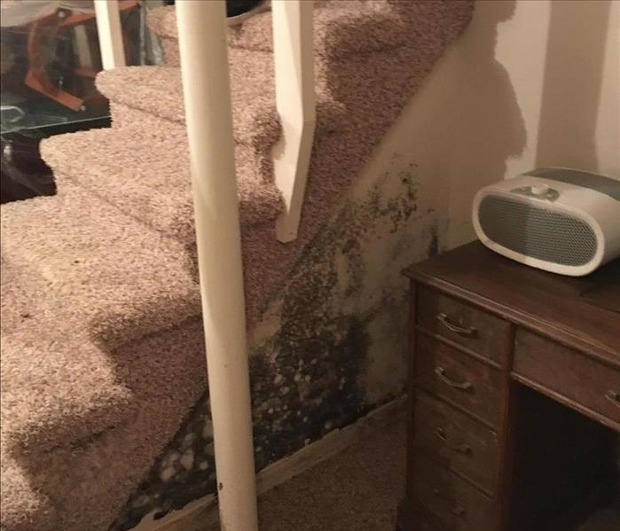 Restoration from Mold Wauconda Before