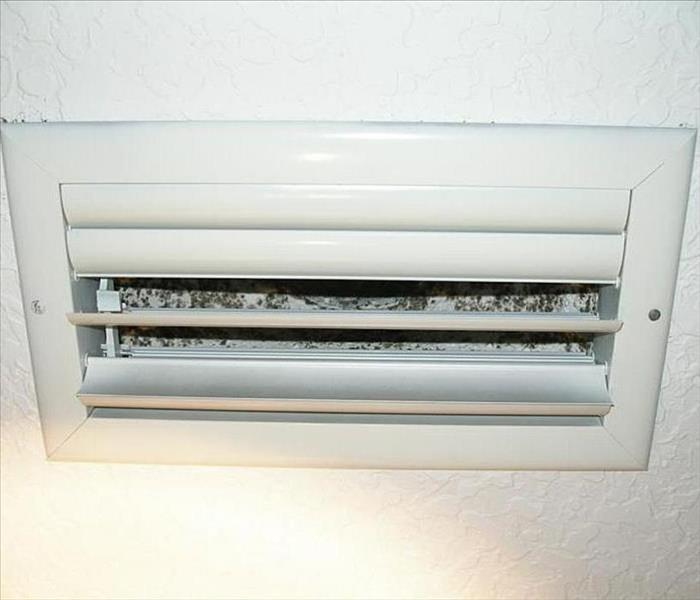 Mold Remediation Mold Growing in Your AC Unit in Your Southern McHenry County Vacation Home or Home