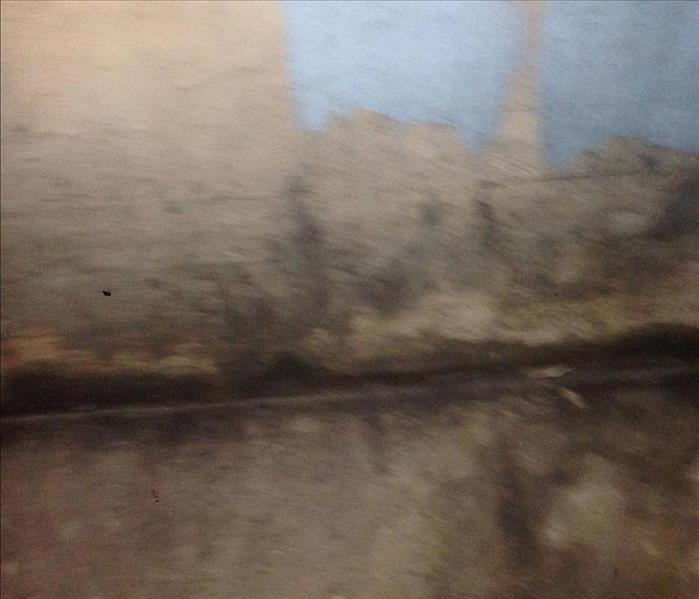 Mold Remediation Concerns with Mold in your Southern McHenry County home?