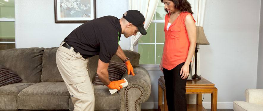 Crystal Lake, IL carpet upholstery cleaning