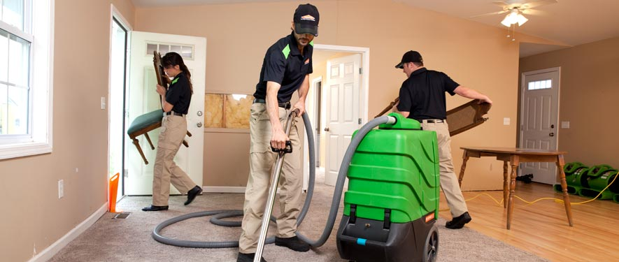 Cary, IL cleaning services